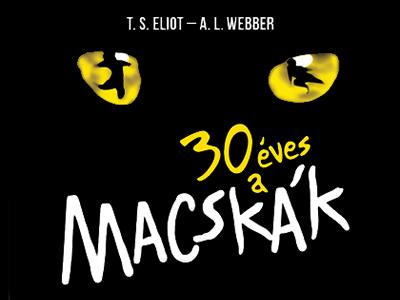 Macskák musical - Győr - Audi Aréna