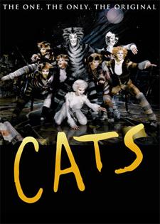 Macskák musical angolul