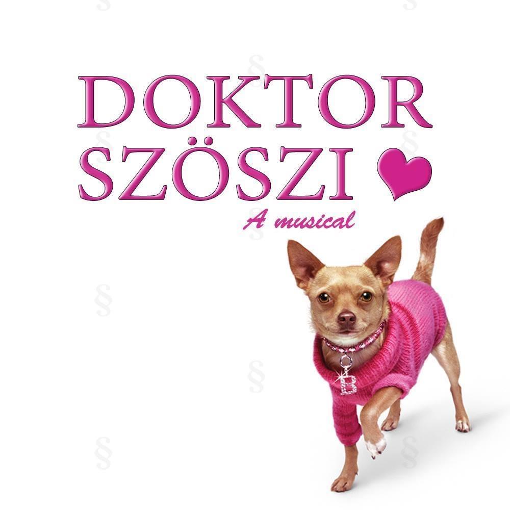 Doktor Szöszi musical