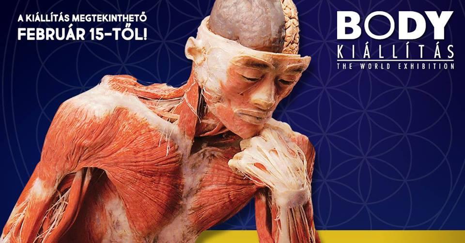 Body Kiállítás Budapest 2018