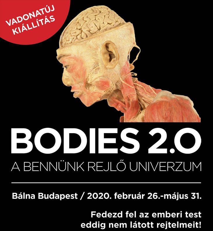 BODIES kiállítás 2.0. - A bennünk rejlő univerzum